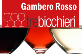 Vini d'Italia Guida Gambero Rosso su Vinoit.it