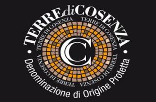 """Vini """"Terre di Cosenza"""" DOP Bruzia  con Camera di Commercio di Cosenza e Promocosenza al Vinitaly 2013"""