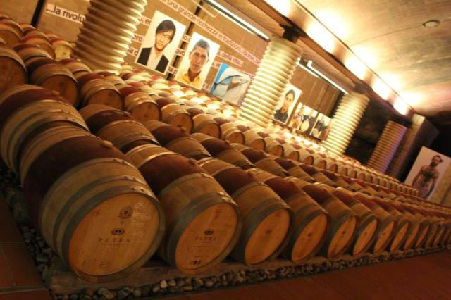 Barriccaia Petra Winery