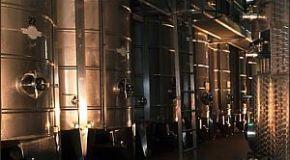 La clarificación del vino 1