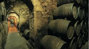 Salamanca celebra un concurso de vinos que crece año tras año