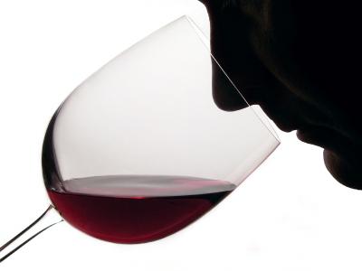 Catar vino Rioja