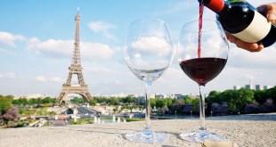 Vinos franceses: ¿Cuántos tipos de vino hay en Francia?