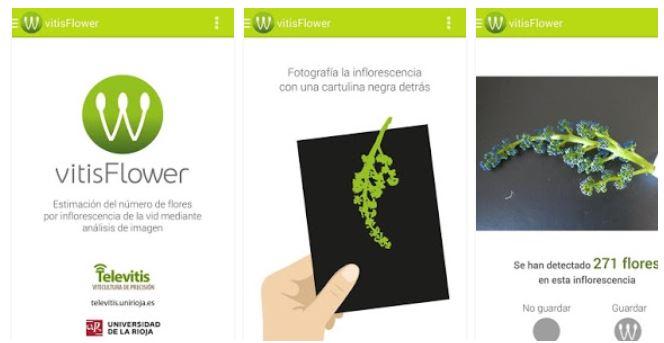 Vitisflower App