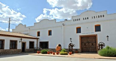 El balance de vendimia en Bodegas Latúe, la referencia de vinos ecológicos