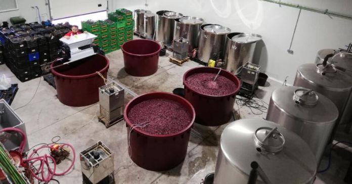 #garagewine vinos de garaje vinos de autor