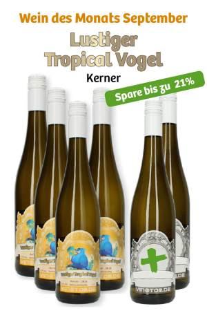 4+2 Weinbox – Lustiger Tropical Vogel