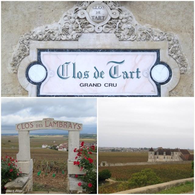 Burgundy 2011
