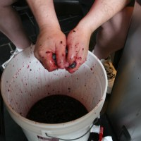 Making wine the hard way