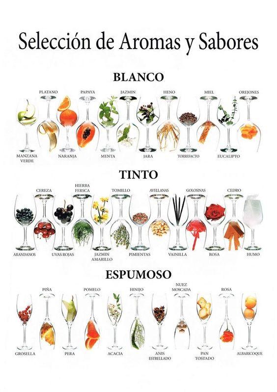 aromas del vino infografía