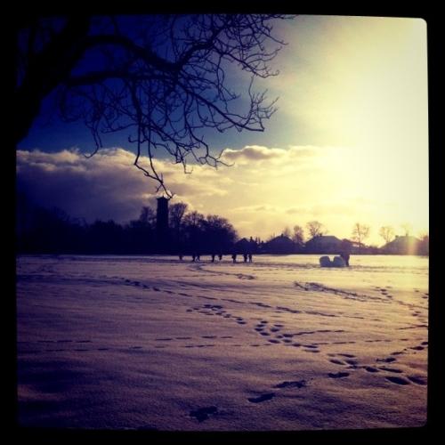 隐隐约约看到雪地上玩耍的小孩