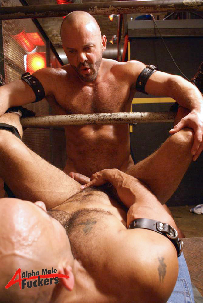 Carlo Cox Rocky Torrez gay hot dude daddy men porn Alpha Male Fuckers