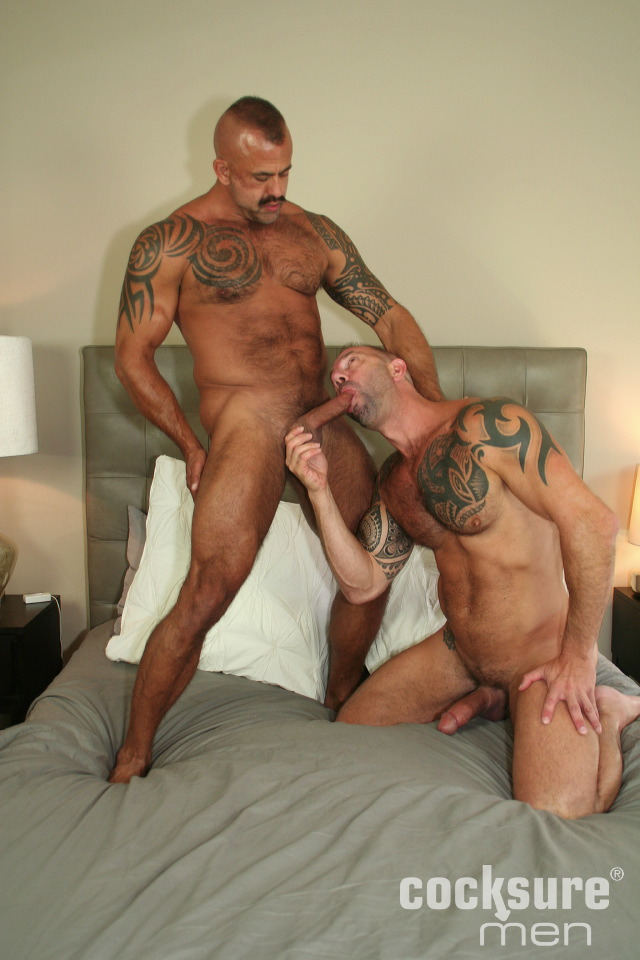 Vic Rocco flipfuck Jon Galt gay hot daddy dude men porn bareback Cocksure