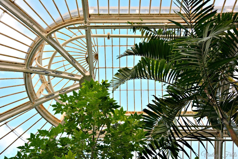 Kew Gardens Palm House Roof