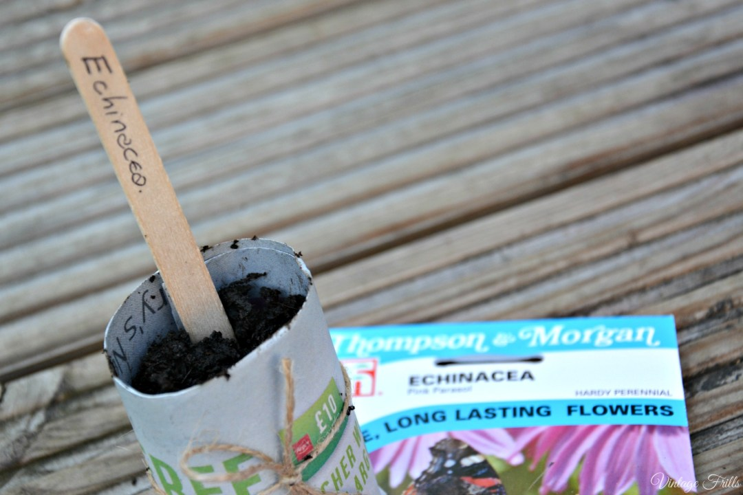 Newspaper Seed Pots and labels