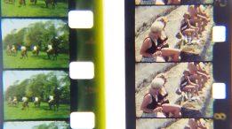 Standard 8 & Super 8 film