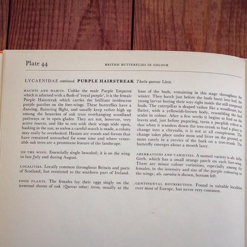 Ботаническая иллюстрация из книги 1968 года. Артикул: tcbbic_pl044