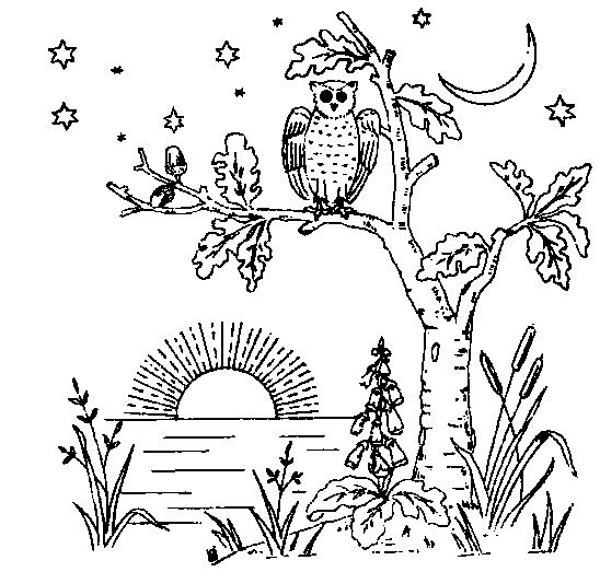 Free Evening Owl Embroidery Design or Coloring Page