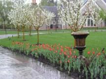 Design Services Vintage Garden