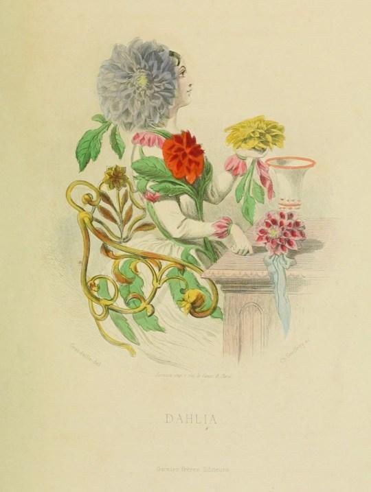 vgosn_vintage_flower_fairy_dahlia_clipart_image