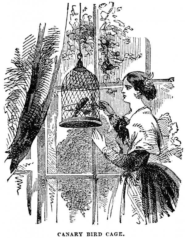 vgosn_vintage_clip_art_illustration_girl_bird_cage_2