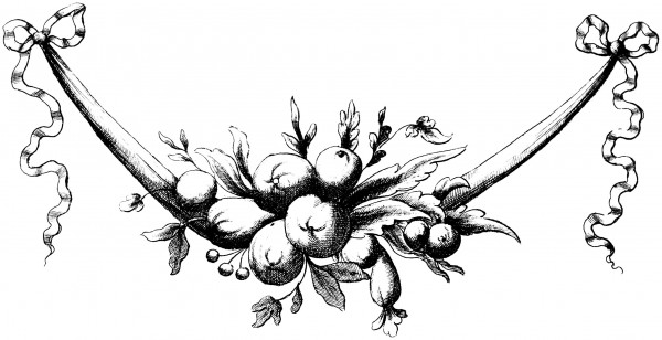 vgosn_vintage_fruit_swag_illustration