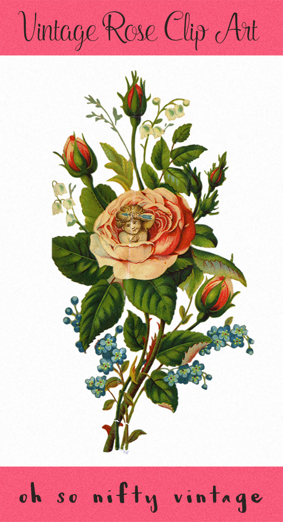Royalty Free Images Clip Art - Valentine Rose