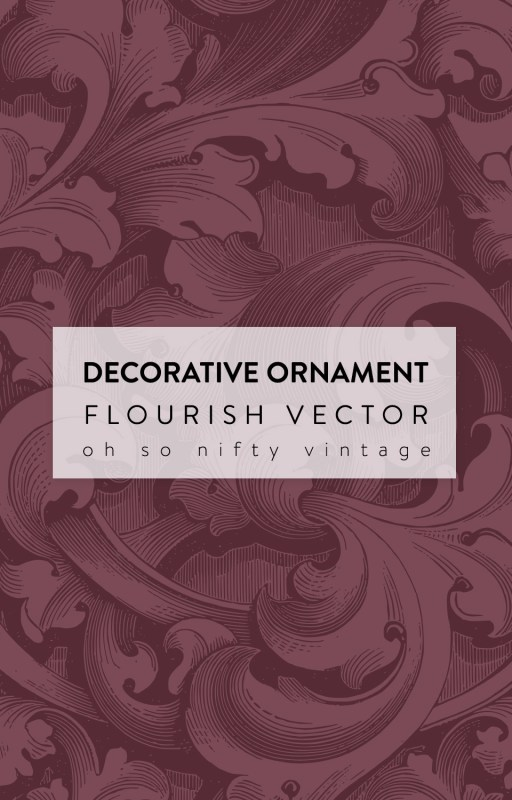 Gorgeous Decorative Ornament Flourish Vector