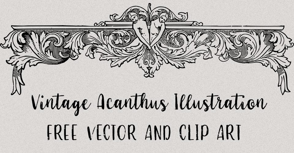 Vintage female Acanthus Illustration