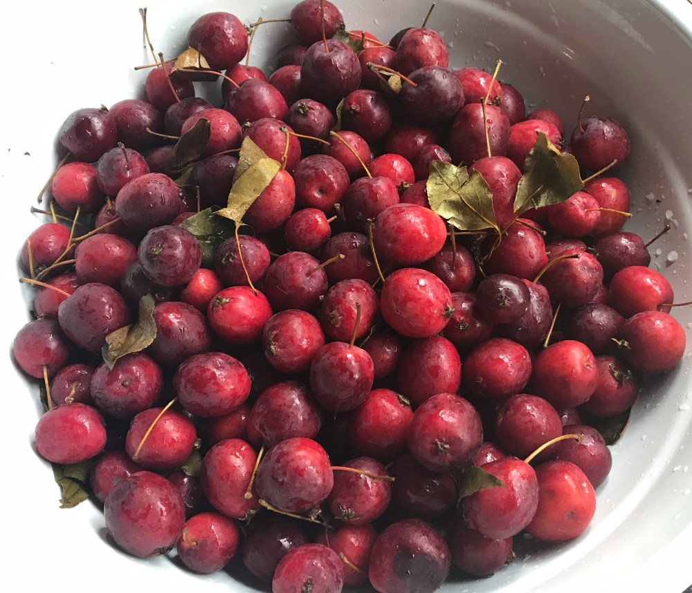 crabapples in bowl