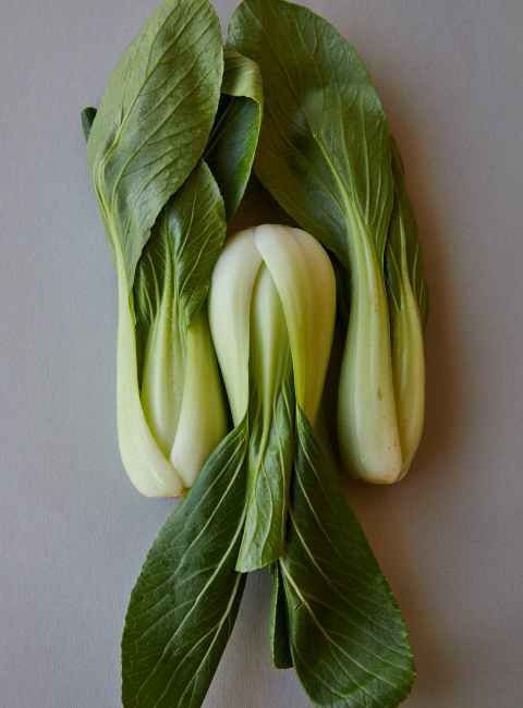 heap of fresh bok choy with green leaves
