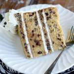 Slice of Chocolate Chip Cookie Cake Web