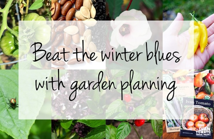 Beat the winter blues with garden planning! You'll find this a useful resource for buying heirloom seeds to plant your vegetable garden.