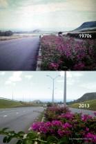 Bagatelle M1 Motorway - 1970s/2013
