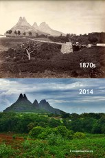 Bassin Estate Holyrood - 1870s/2014