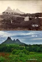 Bassin Estate Holyrood - 1870s/2014