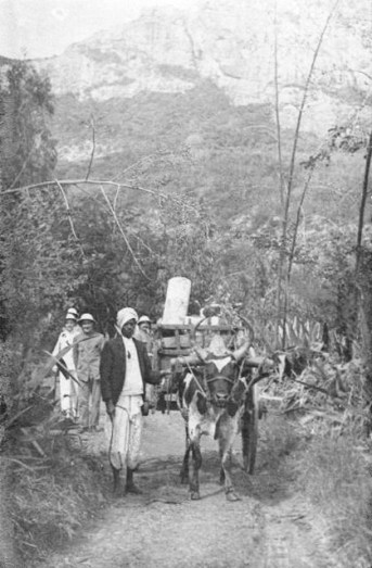 Hawkers of the Past Mauritius - Marchand Mercerie - 1900s