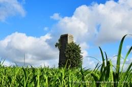 Minissy Old Sugar Mill Chimney