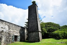 Mont Choisy Old Mill Chimney and Ruins