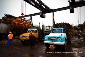 Old Bedford J6 Trucks Sugar Cane Mon Desert Alma Mauritius