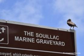 Souillac Marine Graveyard Cemetery 2