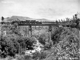 The Riviere des Anguilles bridge when it was still being used for Trains