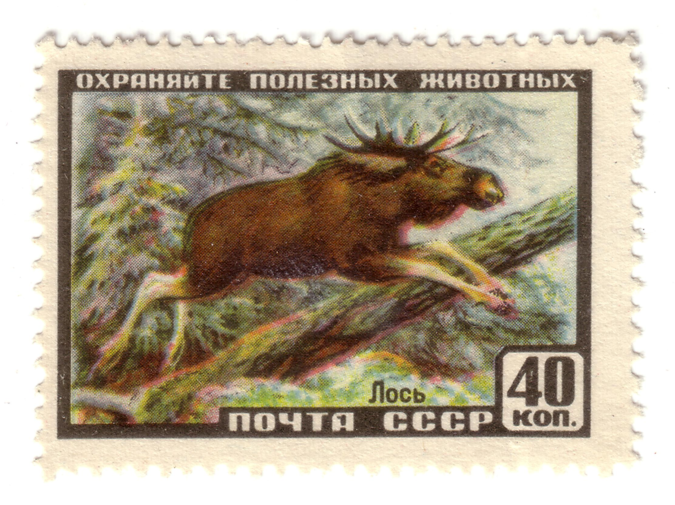 Art  Stamp Art  Animal  Russia  Moose  Vintage