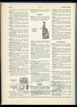bust extender 1909