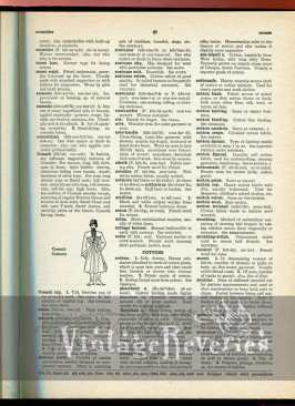1930s fashion book