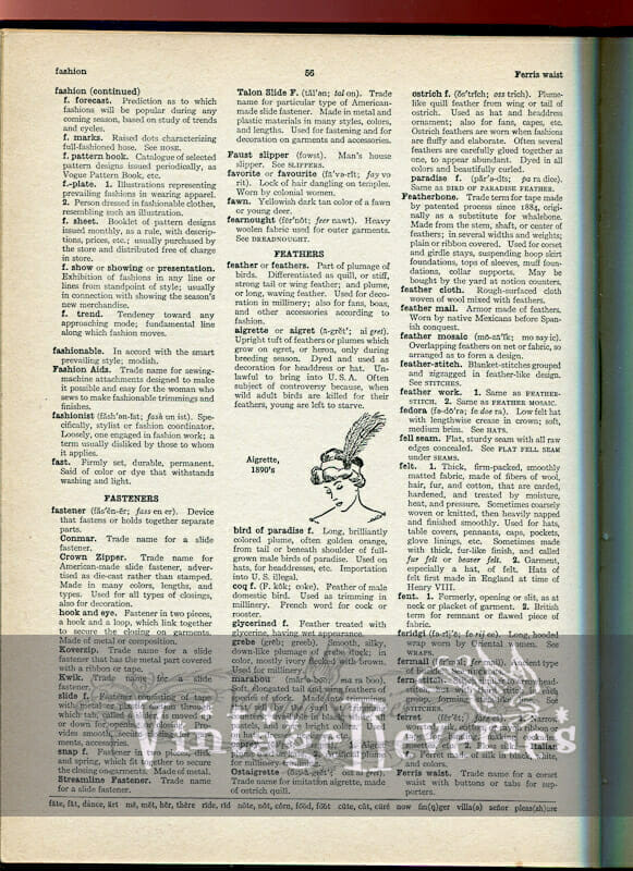 old fashion dictionary