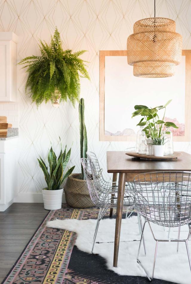 Master List of Low Light Indoor Plants