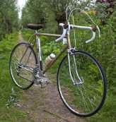 Dutch bike Stormvogel