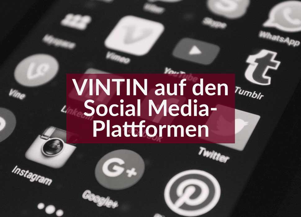 VINTIN auf den Social Media-Plattformen
