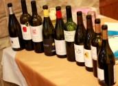 degustare de vinuri import